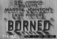 martin-osa-johnson-picture-borneo